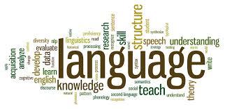 IL icon languages